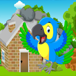 Games4King Cute Parrot Rescue