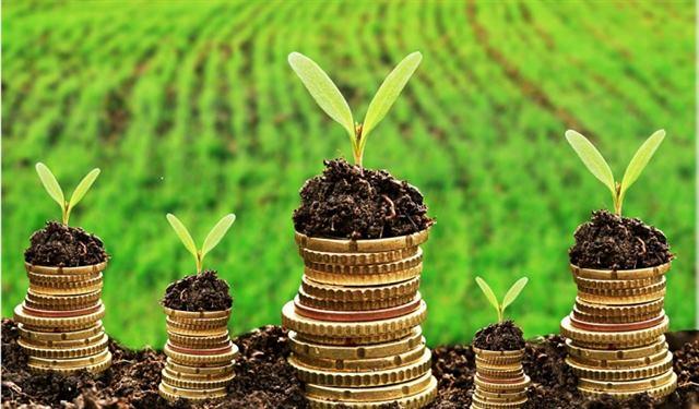 تعريف وأنواع وأهمية المؤسسات المالية - شرح وافى وسهل