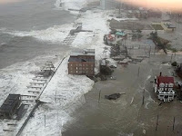 Hurricane Sandy and our ecosystem