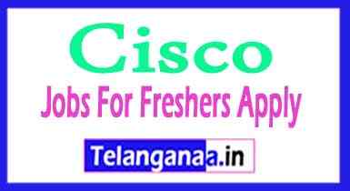 Cisco Recruitment Jobs For Freshers Apply