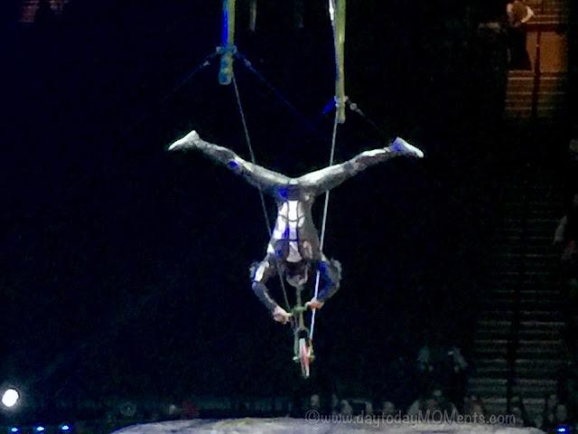 """OVO"" Cirque Du Soleil Live"
