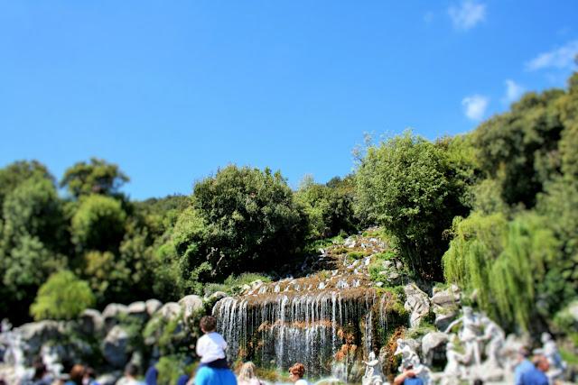acqua, casata, rocce, alberi