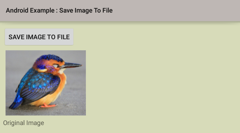android - How to save image to file in external storage