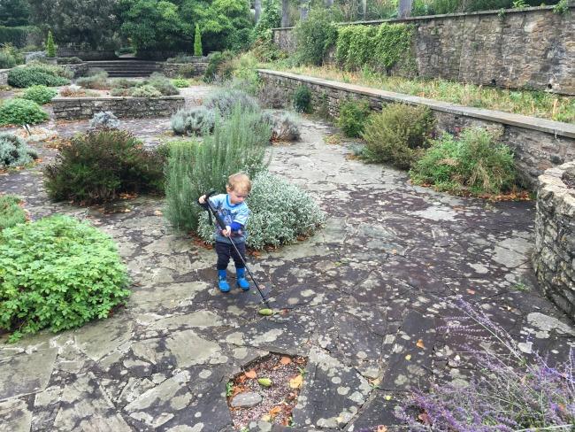 toddler-with-walking-stick-and-magnolia-cone-in-paved-garden-at-dyffryn-gardens