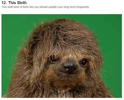 Sad sloth