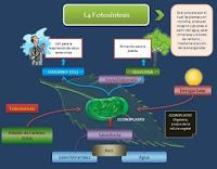 http://aip-recursos.blogspot.com.es/2012/10/observa-la-siguiente-figura-observamos.html