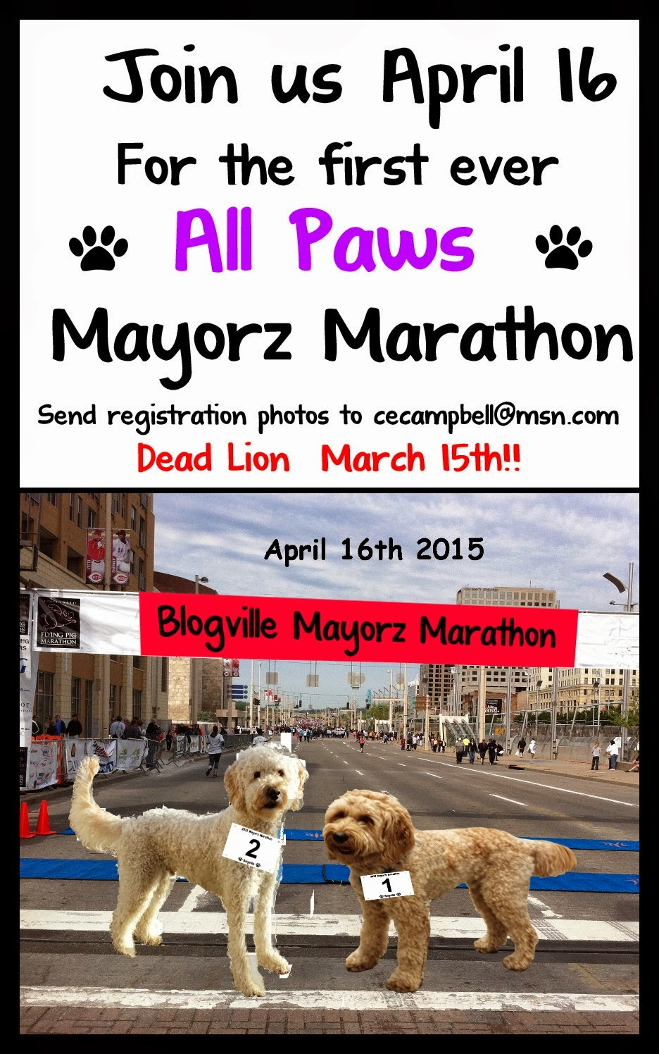 http://murphyandstanley.blogspot.com/2015/01/official-announcement-mayorz-marathon.html