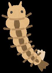 蚊の一生のイラスト(幼虫)