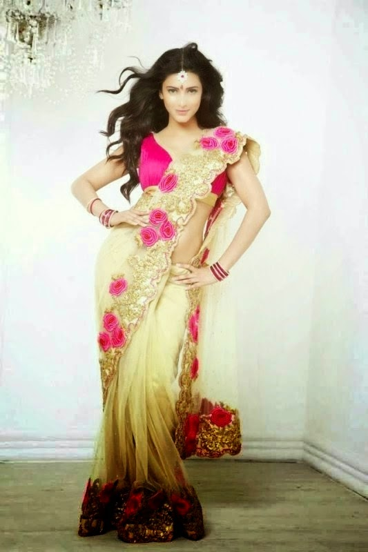 Shruti Haasan in Fancy Saree