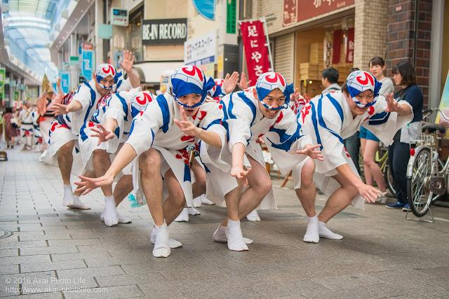 高円寺パル商店街、いろは連の流し踊りの写真 1