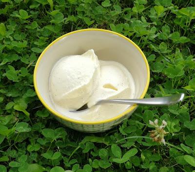 Schmand-Eiscreme; Schmand-Vanille-Eiscreme