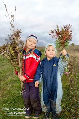 дети с букетом сухих цветов