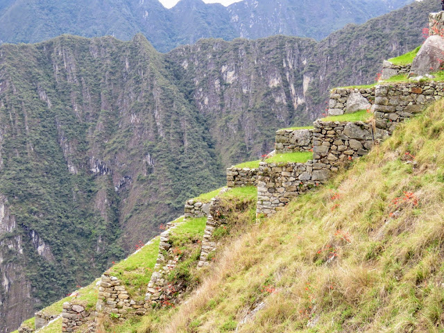 Picture of a terraced farm at Machu Picchu in Peru
