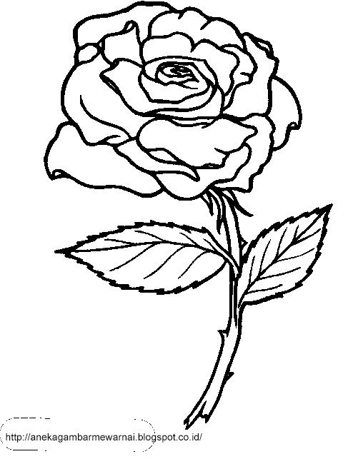 Gambar Mewarnai Bunga Mawar Untuk Anak PAUD dan TK 3