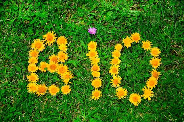 Cosmétique naturel ou bio, la différence - Blog beauté Les Mousquetettes