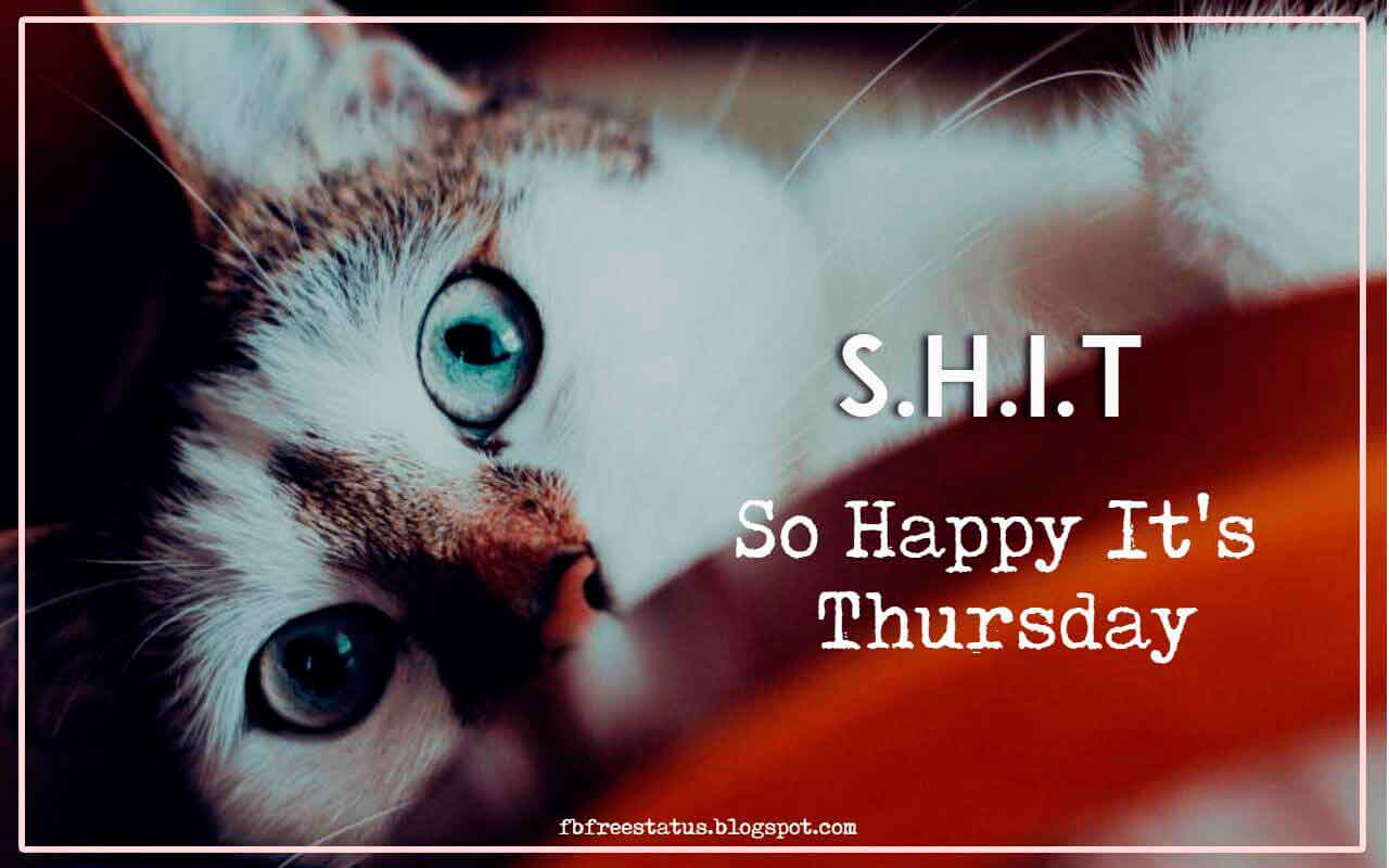 S.H.I.T So Happy, It's Thursday