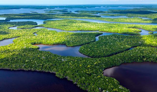 Los Everglades