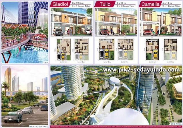 Rumah Sedayu Indo City PIK2 Cluster Cleveland Dijual