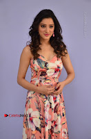 Actress Richa Panai Pos in Sleeveless Floral Long Dress at Rakshaka Batudu Movie Pre Release Function  0029.JPG