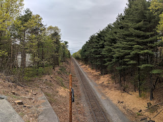 trees and brush removed along the train tracks to enable the Positive Train Control system to be installed