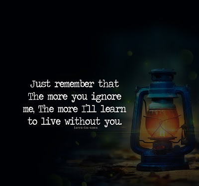 Just remember that the more you ignore me, the more i'll learn to live without you