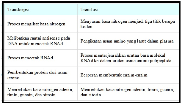 Biologi gonzaga catatan sintesis protein un translasi adalah tahap pembacaan kode yang ada pada mrna dengan bantuan rna transfer atau trna ccuart Images