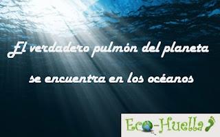 EL OCEANO ES EL PULMON DE LA TIERRA
