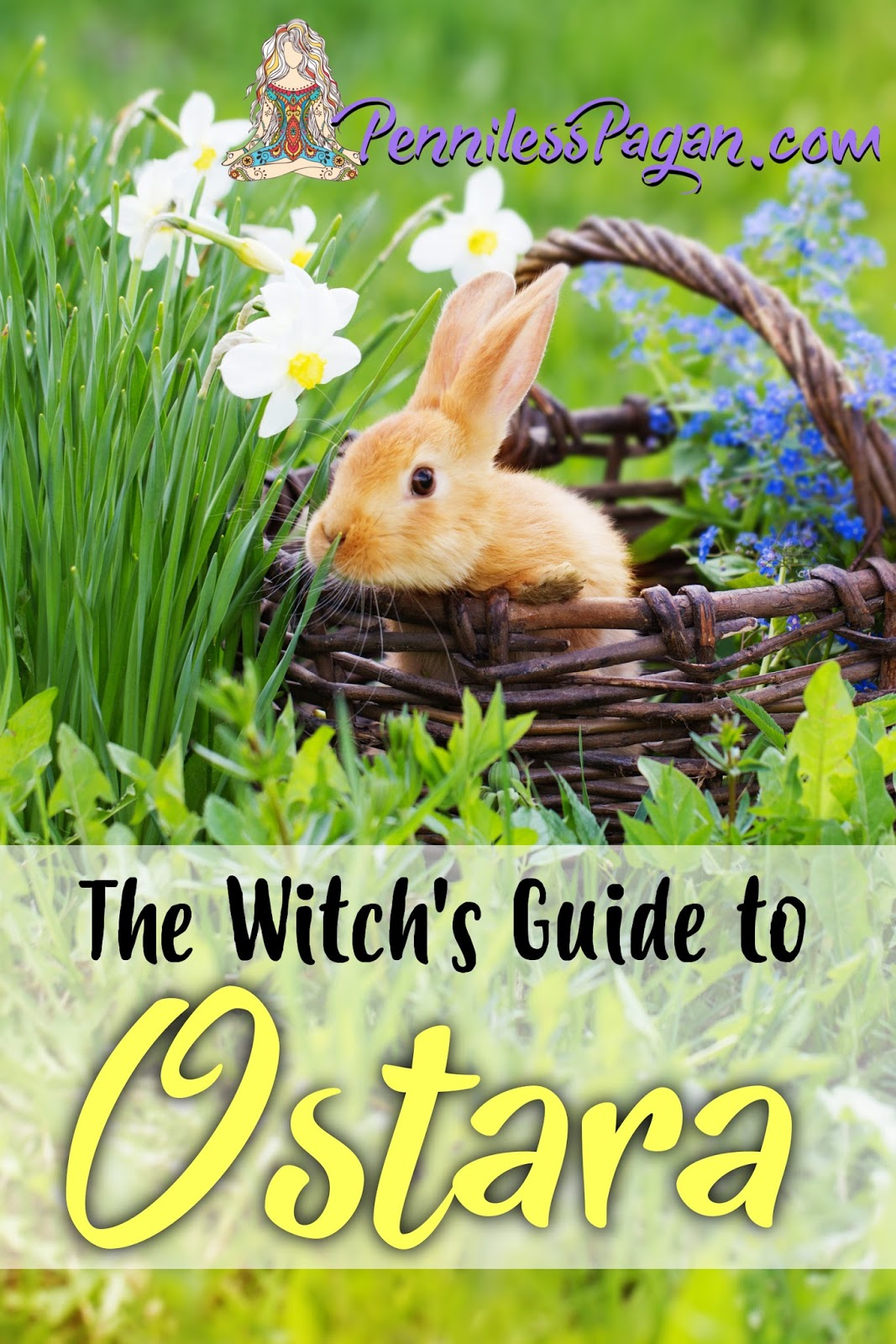 Penniless Pagan: The Witch's Guide to Ostara (Spring Equinox)