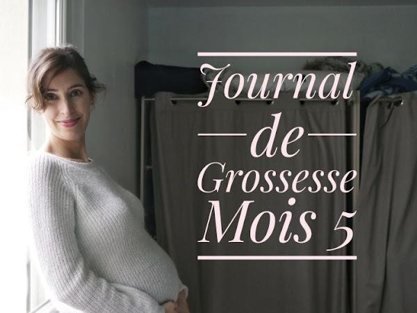 Journal de Grossesse # 2 : le 5ème mois !