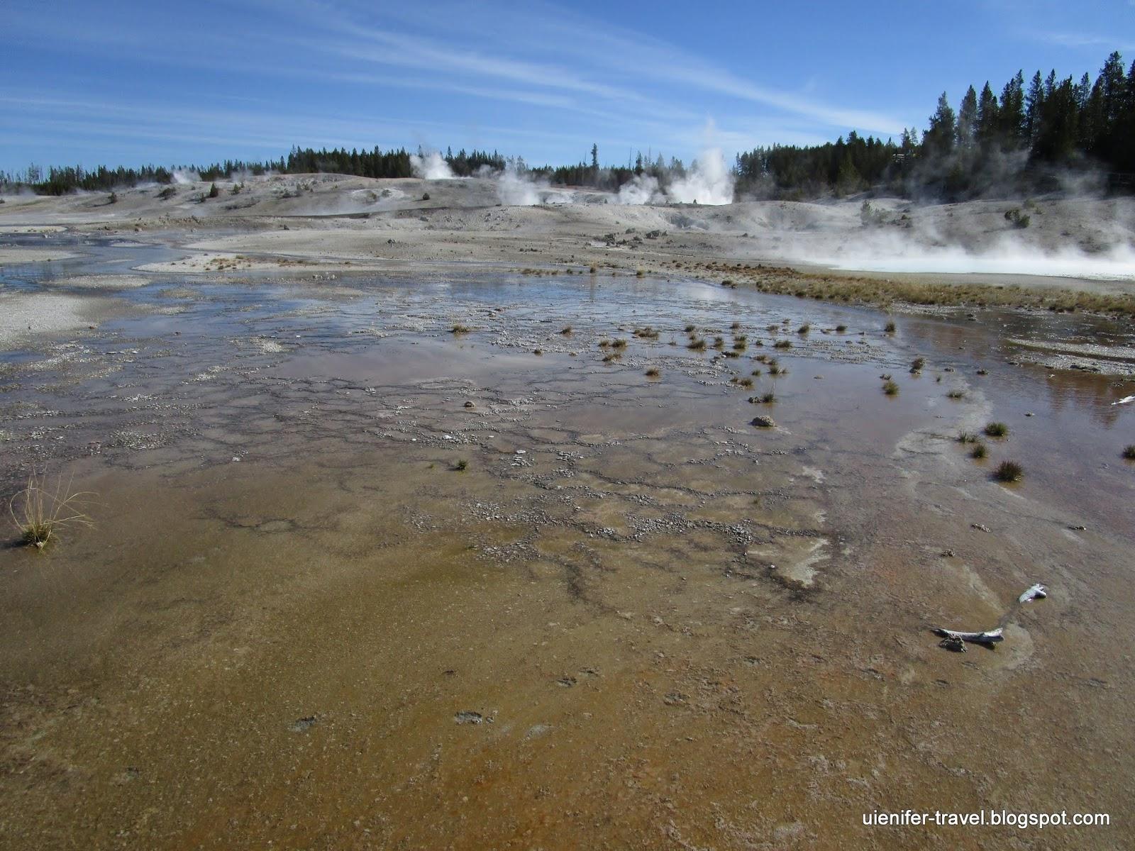 Гейзерный бассейн Норрис. Йеллоустоун, Вайоминг (Norris Geyser Basin. Yellowstone National Park, WY)