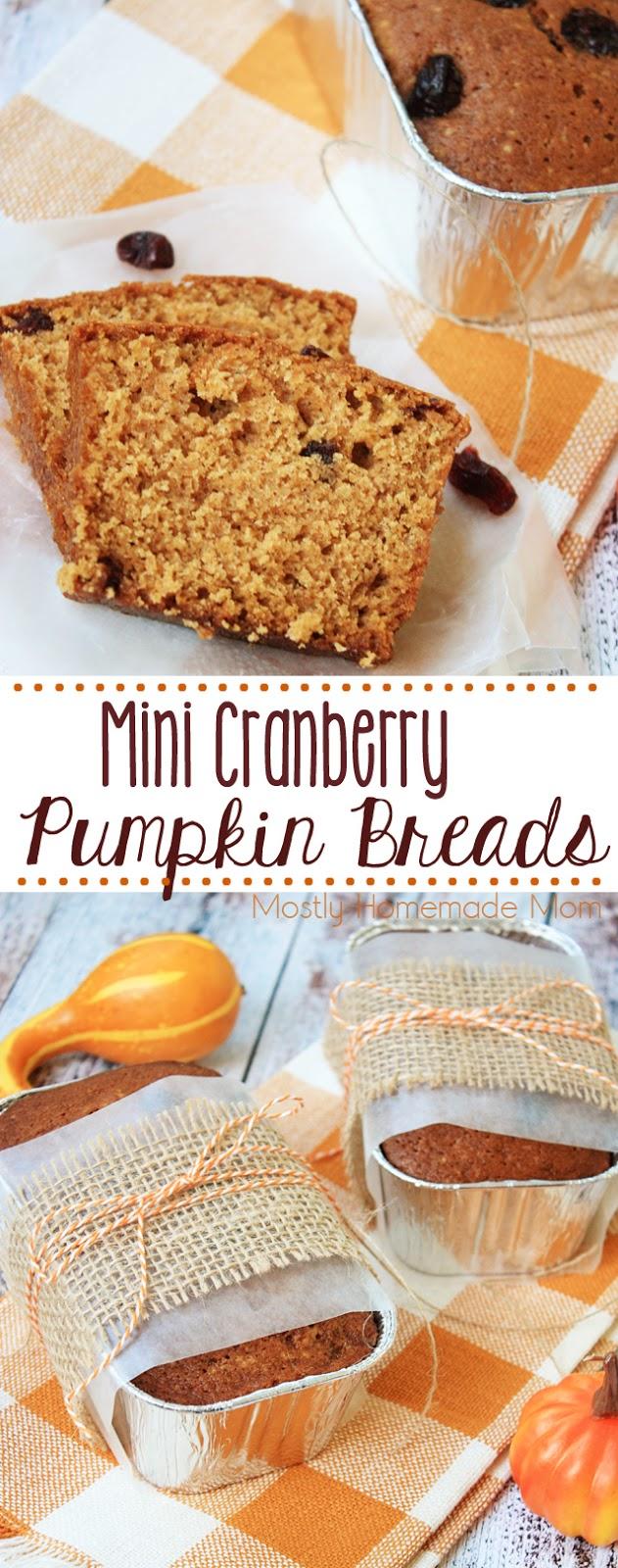 Mini Cranberry Pumpkin Bread Recipe with Canned Pumpkin