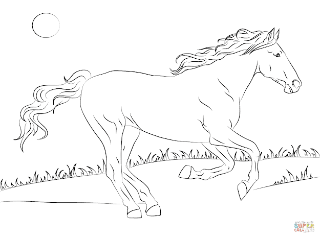 Beautiful Mustang Horse
