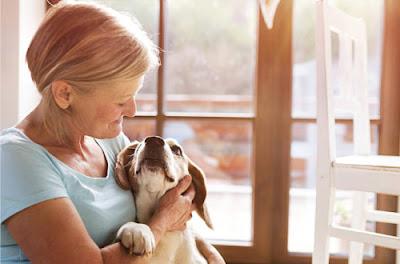 lady hugging dog