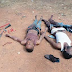 Photo: Suspected armed robbers who attacked cocoa merchant and his son arrested in Ogun State