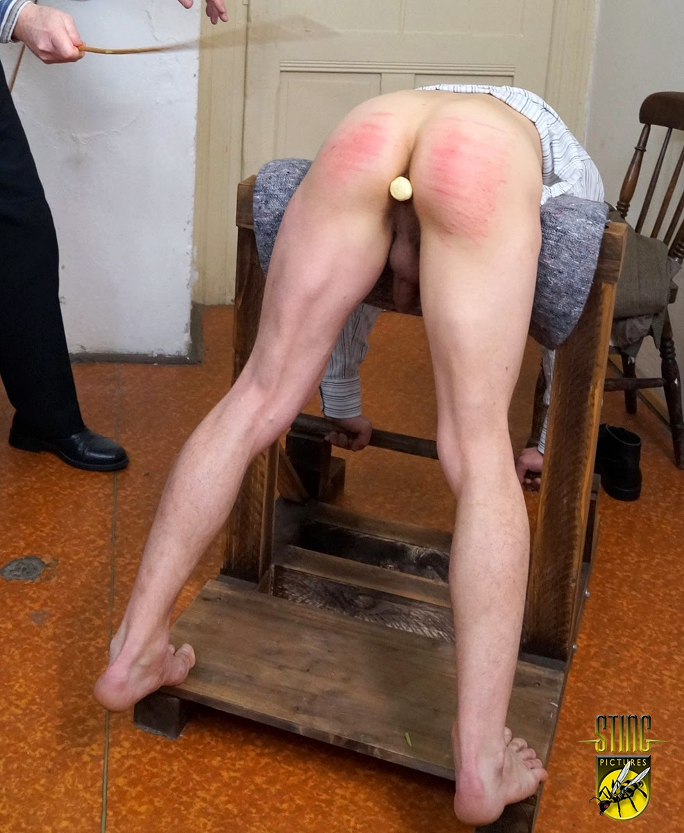 Free male spank archive authentic