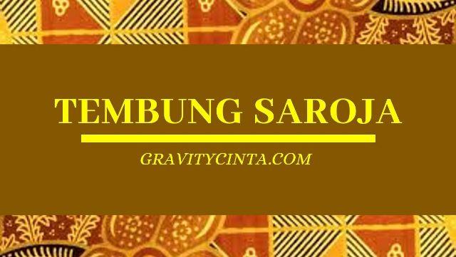 Tembung Saroja Yaiku: Contoh Kalimat dan Artinya (Tegese)