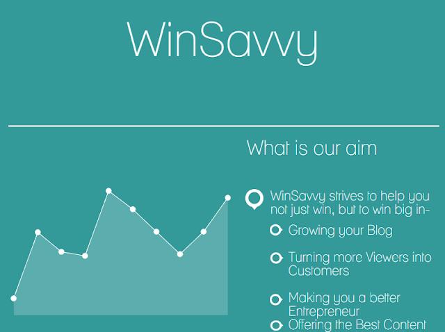 About WinSavvy