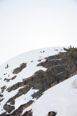 ascending the shelf to the final summit ridge at Alexandra Peak