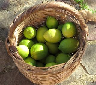 green lemons