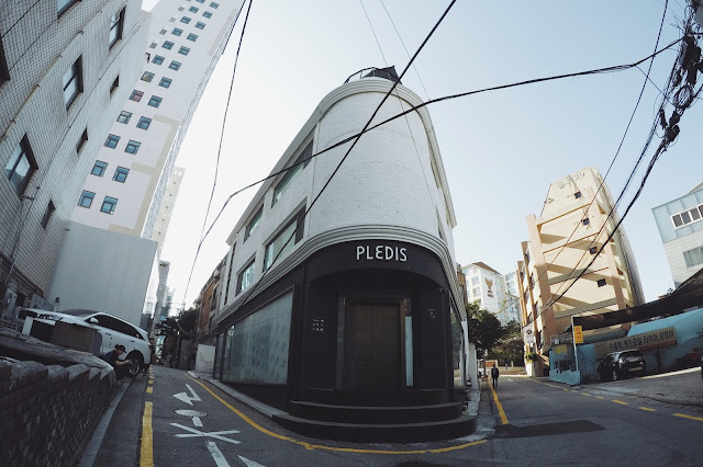 Pledis Entertainment (플레디스 엔터테인먼트)