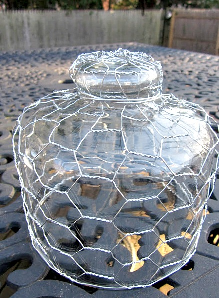Glass cloche wrapped with chicken wire