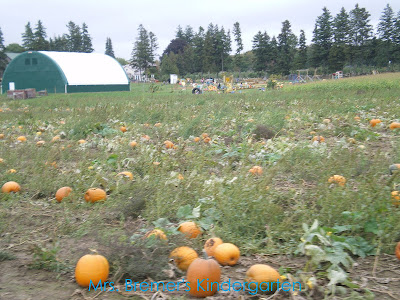 Tons of fun fall Pumpkin activities for Kindergarten!