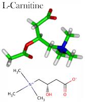 Kandungan WMP L-Carnitine