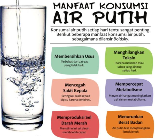 Khasiat Minum Air Putih Di Iklim Yang Panas Edukasi