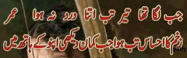 Jab Lga Tha Teer Itna Dard Na Hua  Sad poetry