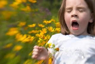 Remedios caseros para la alergia en la nariz