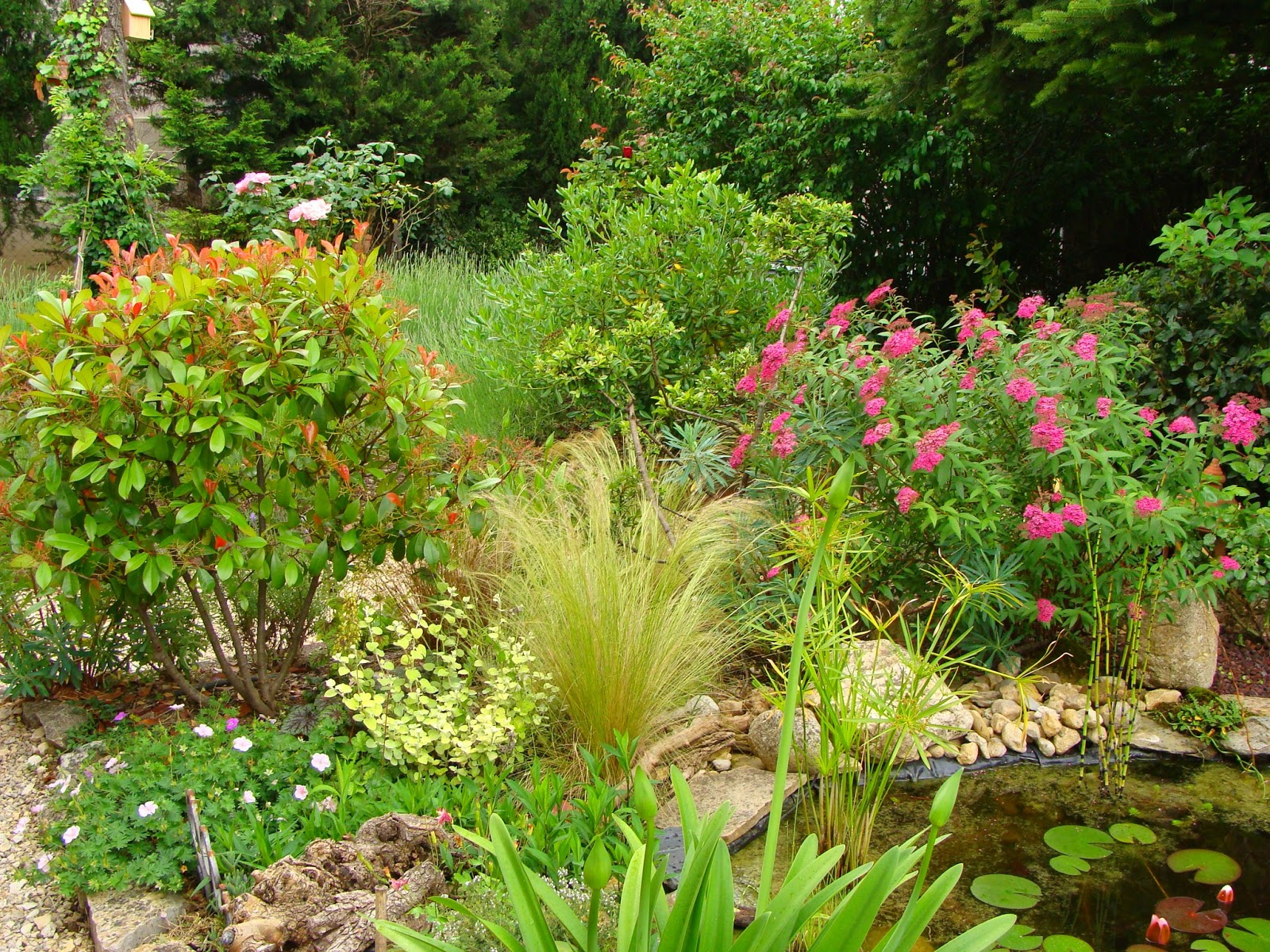 Jardine et ris ne jamais se moquer du physique d for Jardin jardine