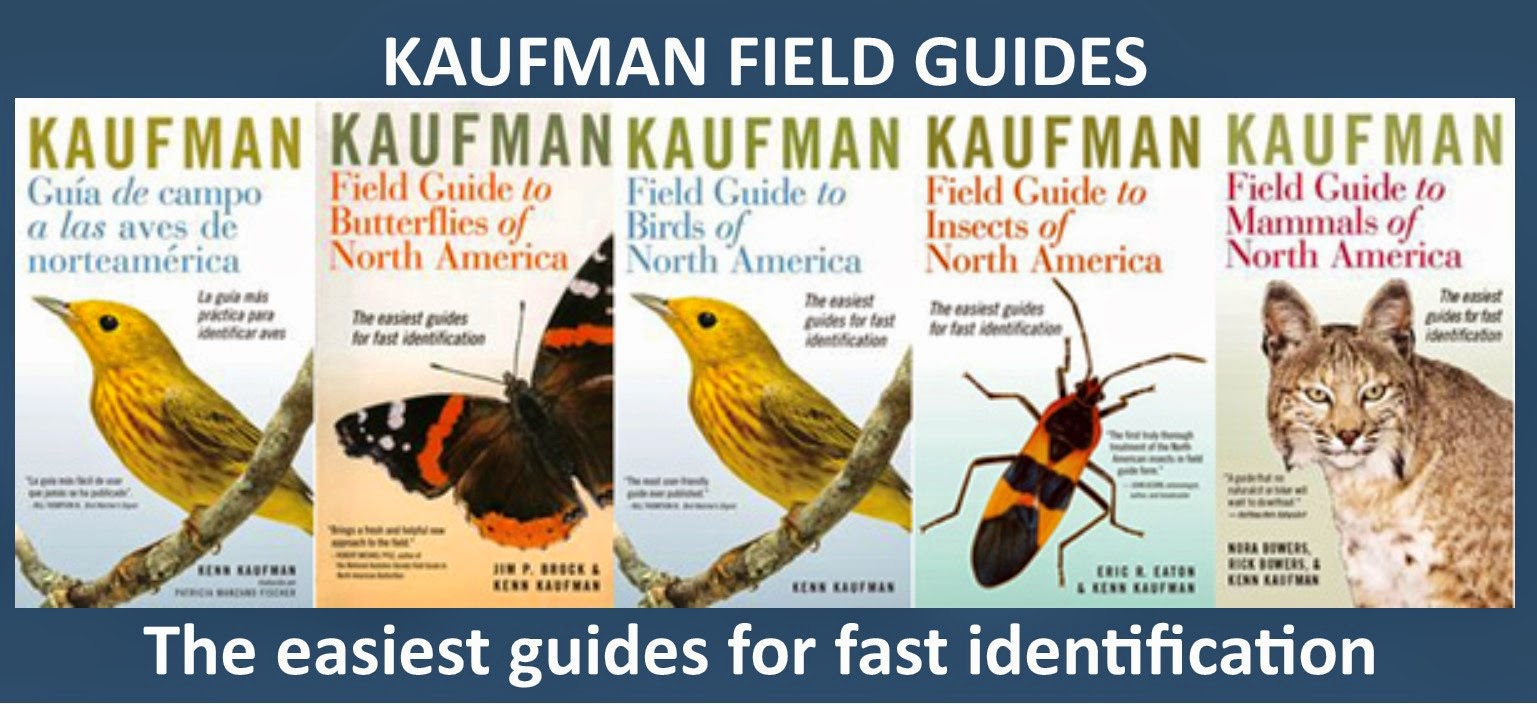 Kaufman Field Guides