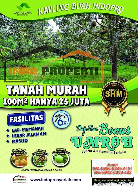 Tanah dijual di Bogor - Kavling Buah Lantaburro - Investasi Kavling Kebun Buah