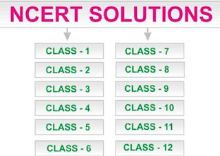 NCERT Solutions for Class 4, 5, 6, 7 and 8 (All Subjects)